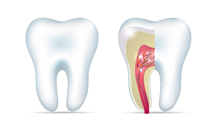Endodontic treatment in Paschim Vihar